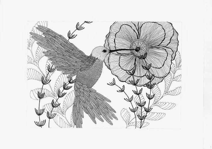 Collibri bird with flower - Elena Paraschiv Illustration