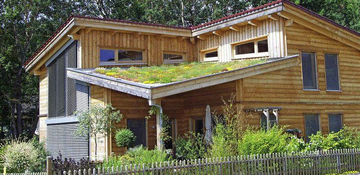 Wachstum auf dem Dach - Begrünte Dächer sind von Vorteil.