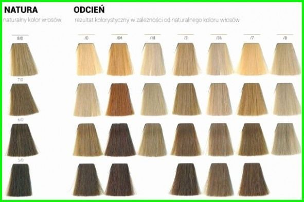 Ion Semi Permanent Hair Color Chart 4549 why You Should Not Go to Ion Permanent
