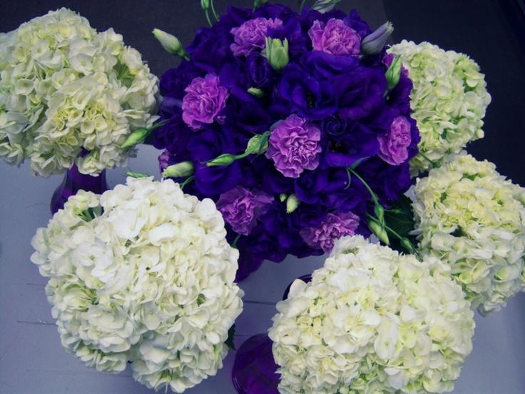 Purple weddingFlowers Gardens, Local Phones, Flower Shops, Email Address, Company, Contact Flowerama, Codes, Purple Wedding, Flowerama 142
