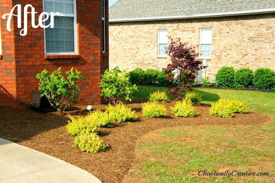 64 best landscaping house images on pinterest backyard for Professional landscaping ideas