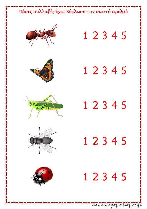 97 besten owady Bilder auf Pinterest | Insekten, Schule und Englisch