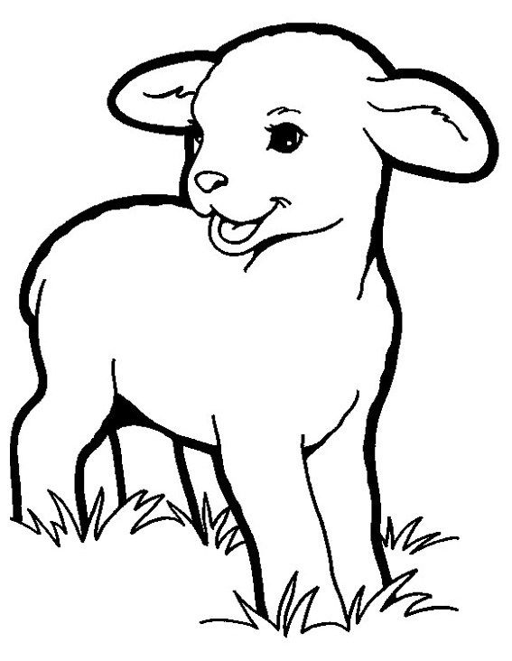 Lamb Coloring Pictures A Young Sheep Coloring Sheet Animal Coloring Pages Animal Wall Art Angel Coloring Pages