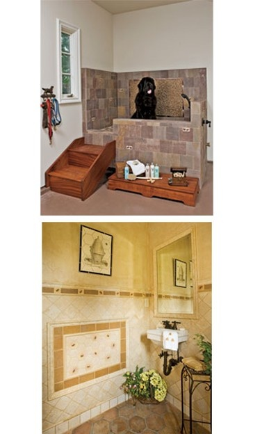 66 best pet showers images on pinterest bathrooms dog shower and pets the picture on top has an interesting idea of adding stairs to elevate the dog solutioingenieria Images