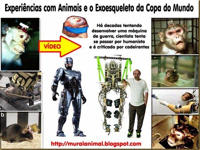 Mural Animal: Experiências com Animais e o Exoesqueleto da Copa do Mundo
