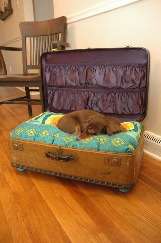 What a great idea- now I have to find an old vintage suitcase! It would be cute in an office or even a guest room.