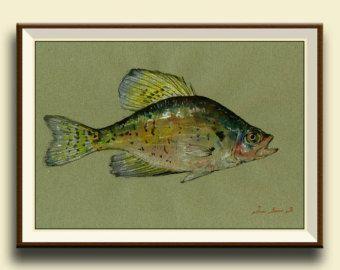 Drucken-White Crappie Fisch - Fisch Aquarell Tier Dekor-Crappie Bass Angeln - Fluss Wandkunst - Original Aquarell PRINT von Juan Bosco