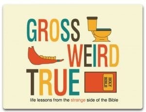 youth group lesson plan: gross, weird, and true. I love it good mix of teenage interest and relating what the Bible says to it. Will def be using