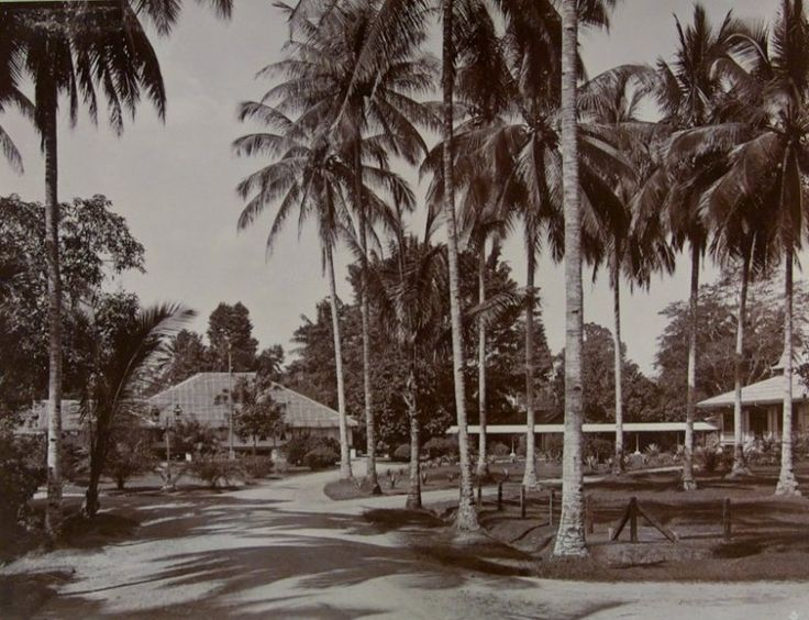Een straat in Medan, Sumatra, Indonesië (1889-1898)