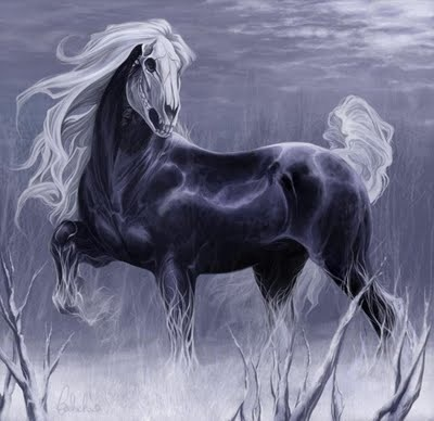 26 best fantasy horses images on pinterest horses unicorns and fantasy pictures voltagebd Gallery