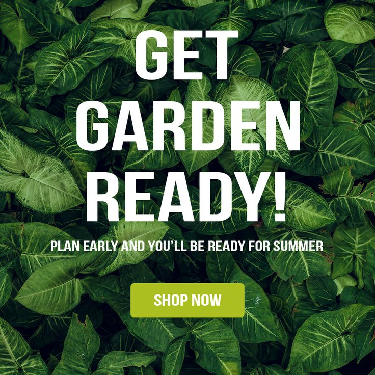 Get garden ready! Prepare early and you'll be ready for summer!