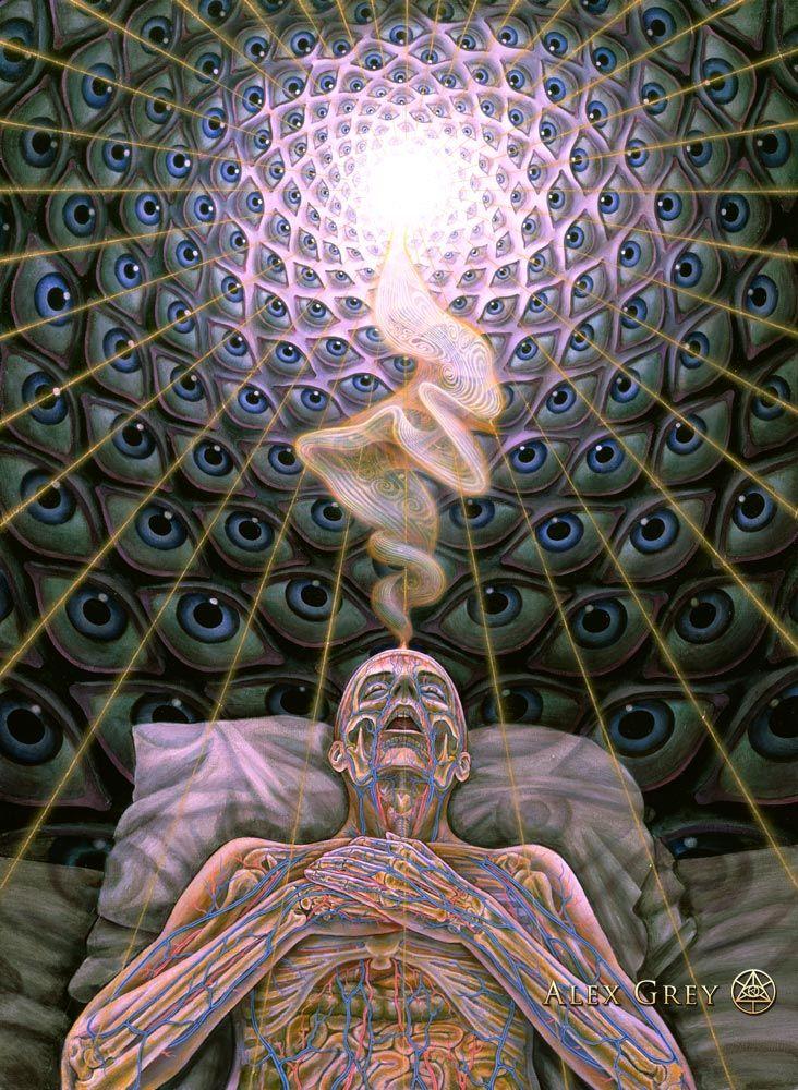 Psychedelic Spirit Paintings, Alex Grey Art Gallery - Karma Jello