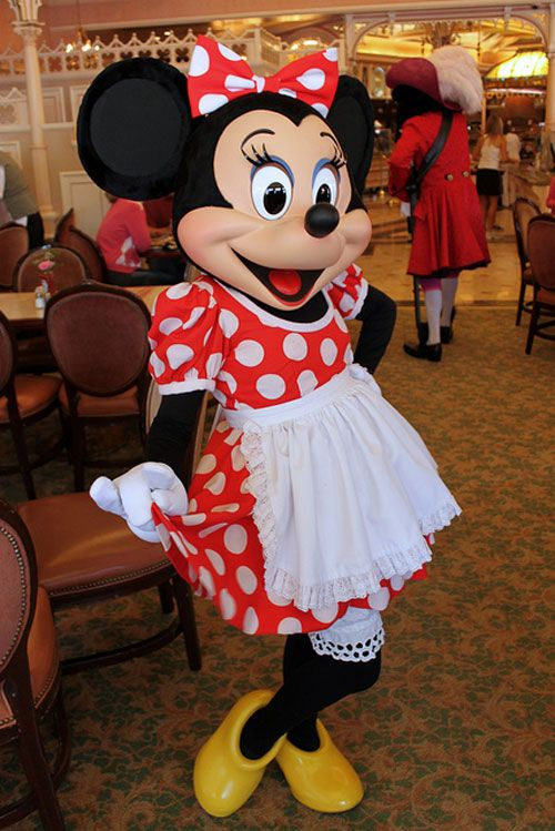 30 Gorgeous Minnie Mouse Pictures