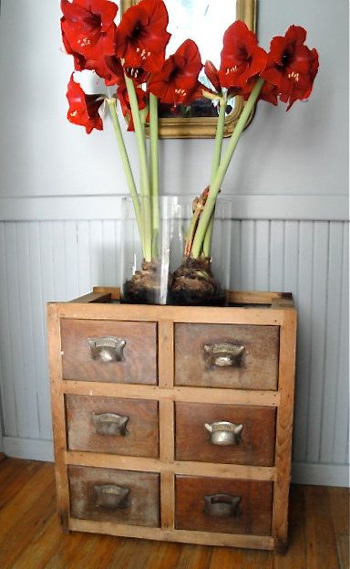 Antique Apothecary Chest By Plainandelegant On Etsy, $125.00