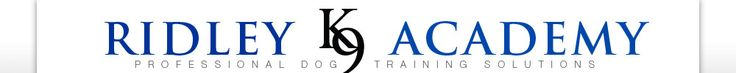 Dog Trainer | Dog Training | Sacramento, Placerville, El Dorado Hills