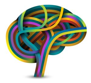 Brain-based Learning   Learning Theory   Funderstanding: Education, Curriculum and Learning Resources