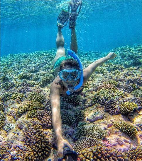Diving in the colorful coral carpets of the Marshall Islands! #Kameleonz #beach #love #life