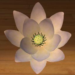 Lotos biały 3D www.florysta3d.pl