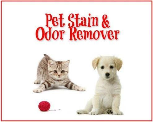 Pet Stain/Odor Remover Finally a cleaner for pet mishaps that works and doesn't take a lot of elbow grease 16 ounces hydrogen peroxide  1 teaspoon dishwashing liquid soap  1 tablespoon baking soda  Using any plastic container, mix the solution in order given, apply or spray a generous amount where needed.  After a day or two vacuum.  It works wonders, no stain, no ODORS. ***caution: do not store leftover mixture, it will build up and can explode.