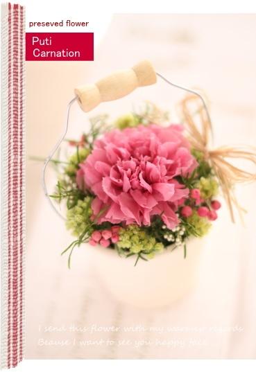 preserved flower Carnation http://item.rakuten.co.jp/fine-flower/ag80/ プリザーブドフラワー