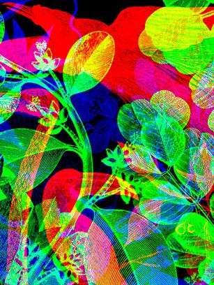 """Superimposition of 3 different images—each a single color. Viewed through a colored lens or shown under a different shade of light the individual layers can be shown or hidden. By Karnovsky -""""La Selva"""" @Jaguar Shoes, LondonArt Work, Bright Art, Galaxies Note, Carnovsky, La Selva, Colors Artworks, Neon Artworks, Awesome Art, Design"""