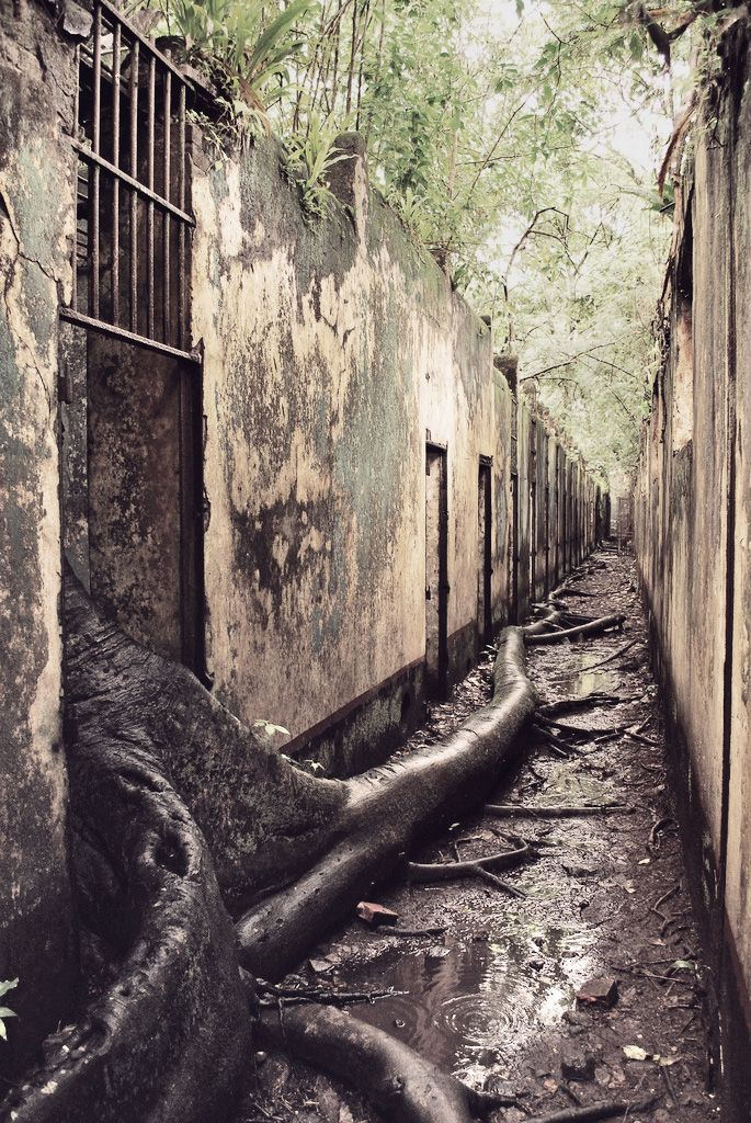 yojimbows: via: destroyed-and-abandoned:The abandoned French Penal Colony known…