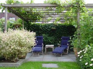 Heerlijk schaduwterras onder de pergola met druif tuinontwerp pinterest for Schaduw een terras
