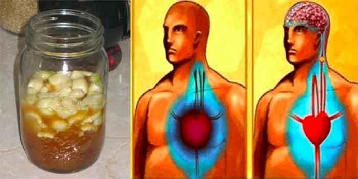 Reinig je bloedvaten en voorkom een hartaanval en beroerte, met één glaasje van deze krachtige drank!