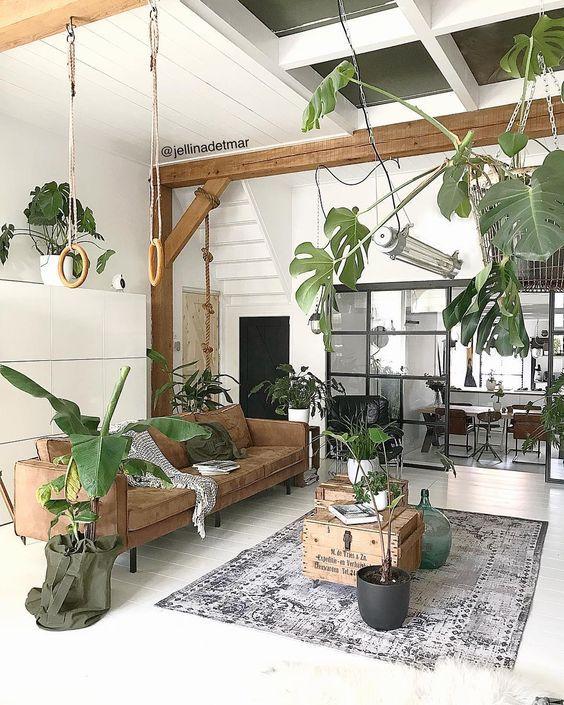 indoor plants decor 564 705 garten pflanzen pinterest mediterrane h user garten. Black Bedroom Furniture Sets. Home Design Ideas