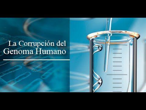 Dr  Armando Alducin NUEVO 2014!  La Corrupcion Del Genoma Humano 2da pte