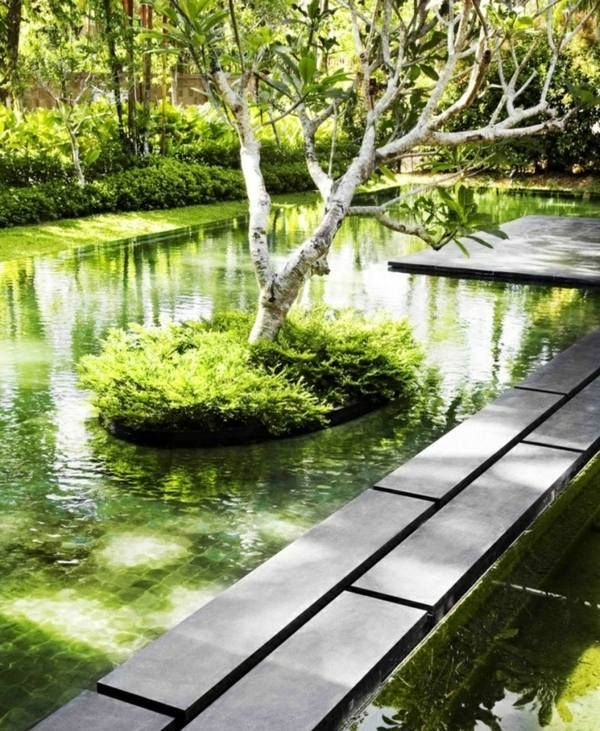 Inspirational Biologischer Pool Garten B umen nachhaltiger Bau