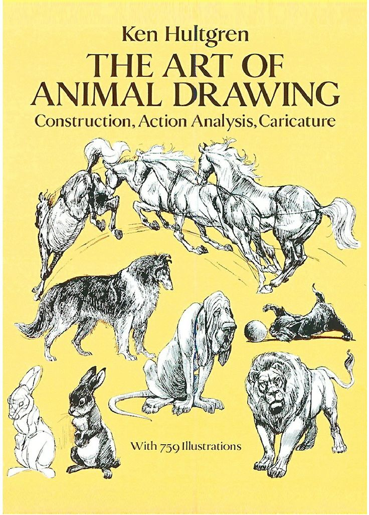 PDF Animal Drawing And Anatomy Dover Art Instruction ...