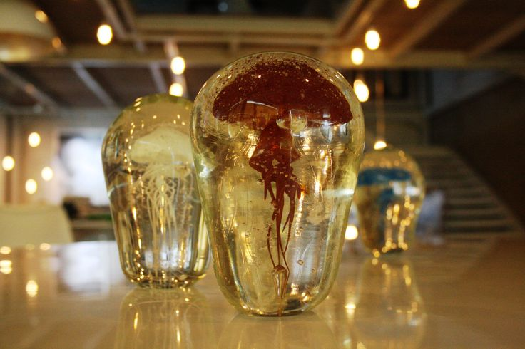 Jellyfishes, by glassblower Ron Seivertson.