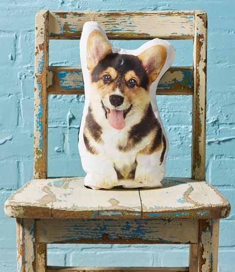 How to Photo Transfer: DIY Pet Pillows. Now you can take your favorite pooch with you whereever you go! Adorable home decor, or a great gift for a college student that just misses her pet!