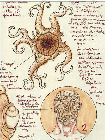 Guillermo Del Toro - Hellboy - sketches