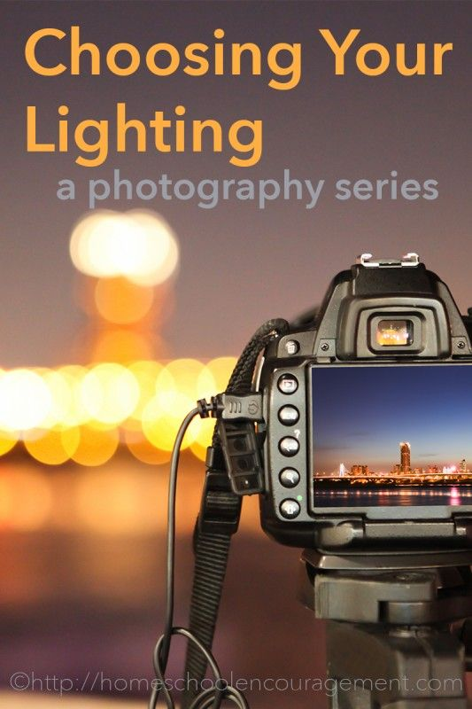 Have you figured out how to adjust for good lighting in your photo?phTips and tricks for photography in this series!