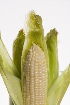 How to Make Corn Cob Wine