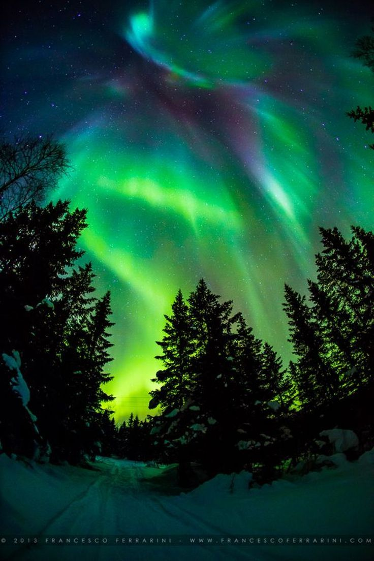 Always wanted to see the northern lights