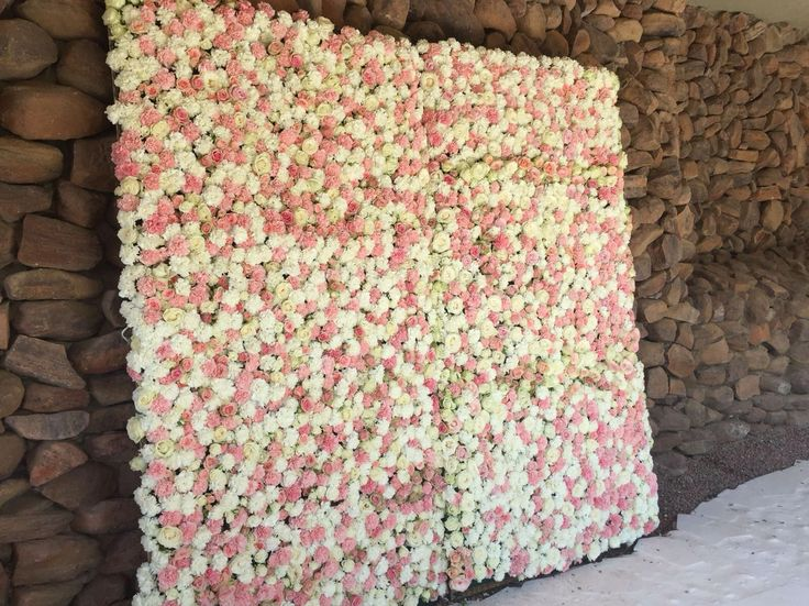 Our flower wall!! All roses and carnations in soft pastels. Built and designed by Bliss Floral Creations