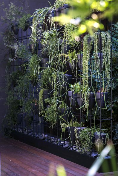 Inner city warehouse | Garden Life