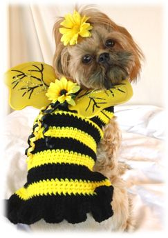 Free Crochet Patterns Dog Clothes : Best 20+ Crochet dog sweater ideas on Pinterest