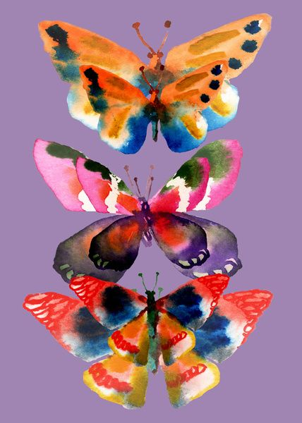 Colorful watercolor butterfly illustration.  Feeling Free