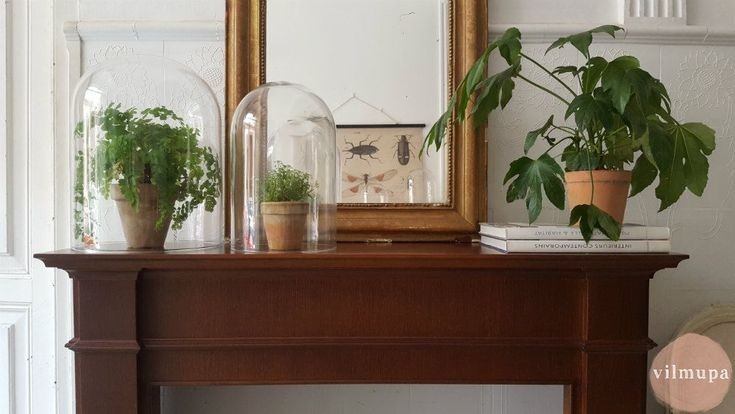 El barnizado, un clásico en los muebles que no pasa de moda – vilmupa.com