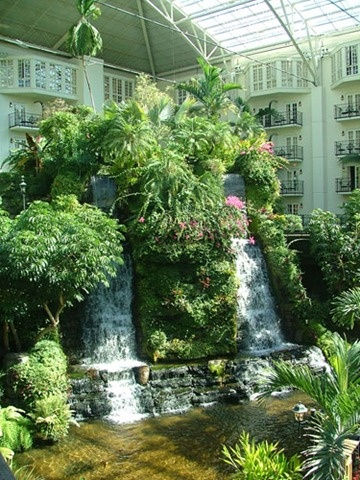 Gardens forests and growing plants on pinterest for Indoor botanical gardens