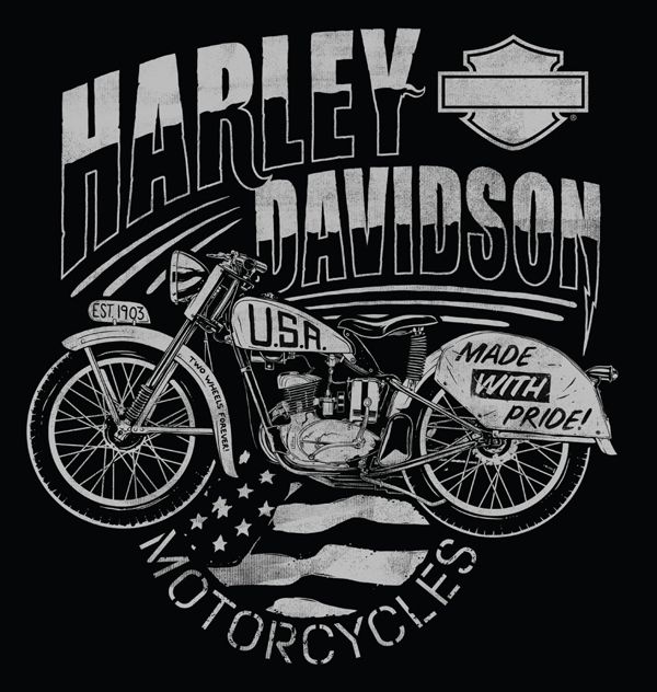 Harley-Davidson is one of the most iconic brands in the world. Each bike has their own design and even the engine sound is part of the brand.