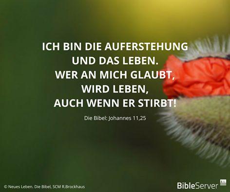 Johannes 11 25