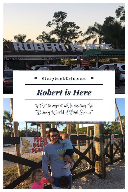 Storybook Erin : Is Robert is Here really the Disney World of Fruit Stands?