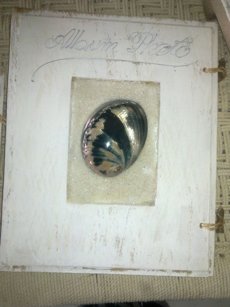 Hand made photo album with natural abalone, in black & white