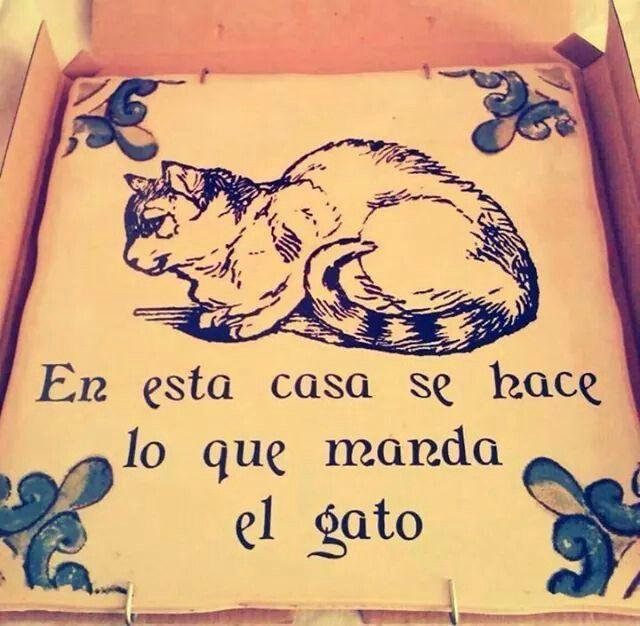 En sta casa se hace lo que manda el gato los - El gato en casa ...