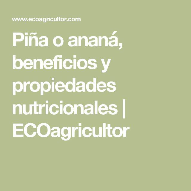 Piña o ananá, beneficios y propiedades nutricionales | ECOagricultor